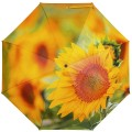 RainLab Fl-148 SunFlower